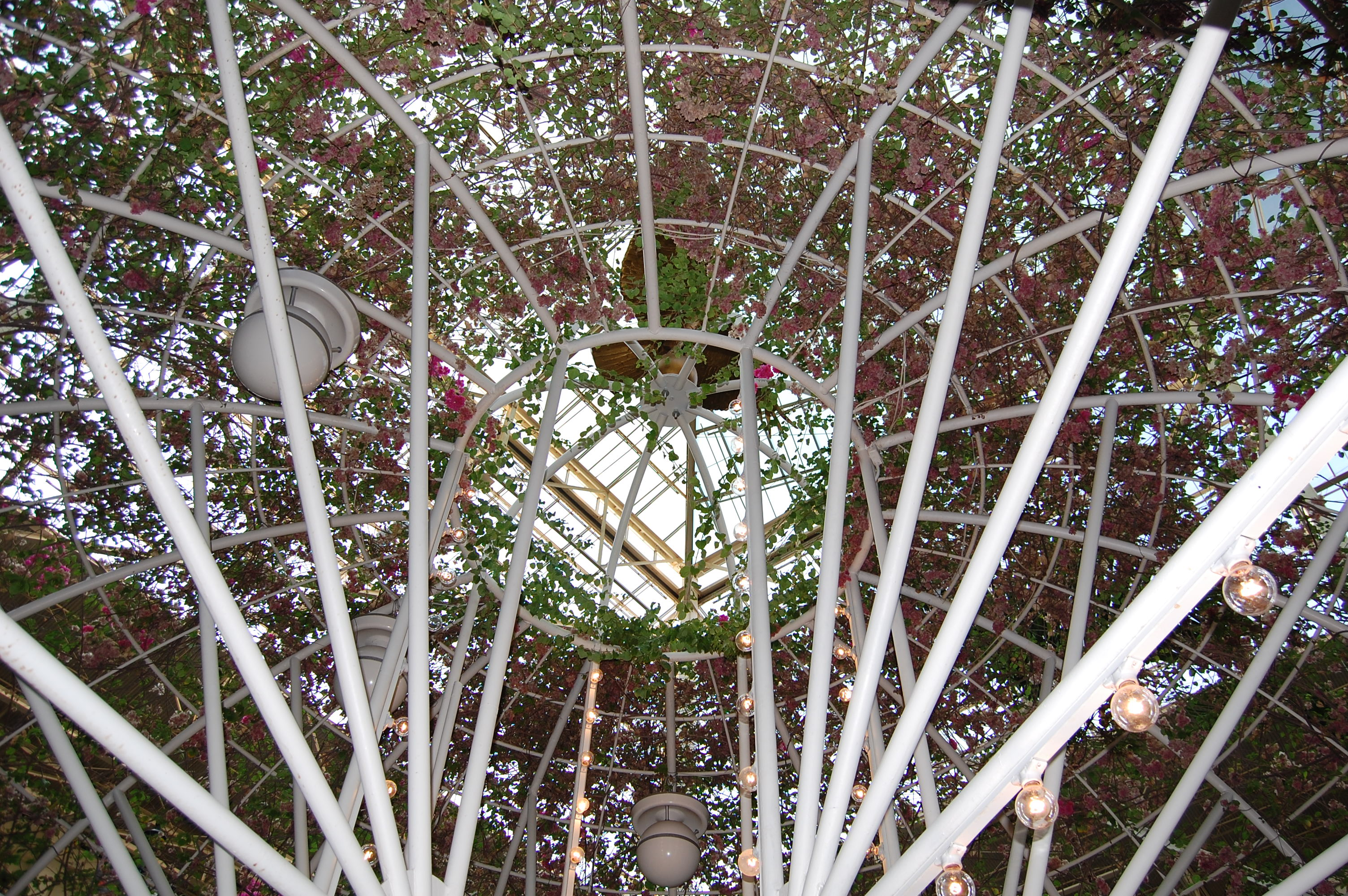 Flower-covered canopy over fountain